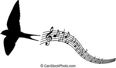 andorinha, música