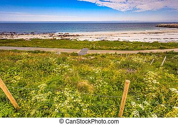 andoya, bleik, 海滩, 海岸, 求助, 海, norway, 沙