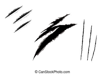 andrajoso, blanco, borde, papel, rasgón