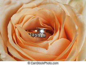 anel, rosa