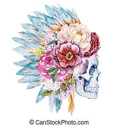 anemones, cranio