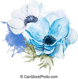 Anemones flowers - Beautiful vector image with nice...