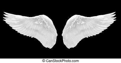 ange blanc, aile, isolé
