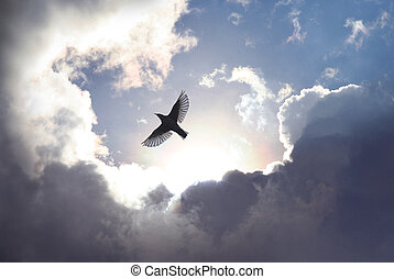 A bird spreads its wings and fly to heaven trough dramatic cloudscape.