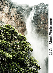 Angel Falls ( Salto Angel ) is worlds highest waterfalls (978 m), Venezuela