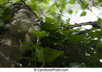 Angel Sculpture Overgrown with Ivy - Closeup of a stone...