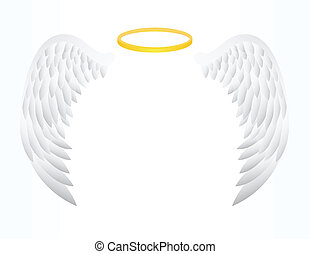 Angel Wing  - vector illustration of Angel Wing