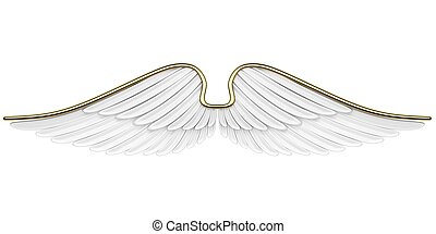 Angel Wings Isolated on white background.