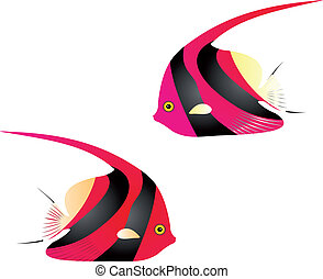 Angelfish vector - Illustration of a long finned bannerfish...