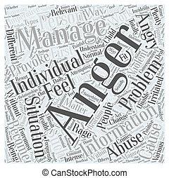 Anger Management Information Word Cloud Concept