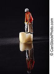 angestellter, miniatur, krone, zahn