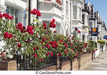 anglaise, maisons, typique, terrasse, london., rang