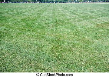 angle, fauchage, large, enchevêtrement, pelouse, marques