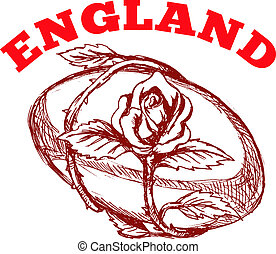 angleterre, balle, rugby, fleur, rose