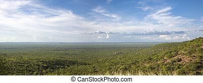 angola, borderline, kunene, panorama, wald, namibia,...