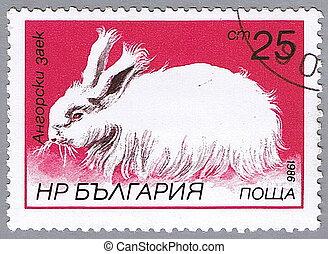 Angora rabbit - BULGARIA - CIRCA 1986: A stamp printed in...