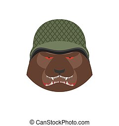 Angry bear in military helmet. Aggressive Grizzly head. Wild animal muzzle isolated. Forest predator