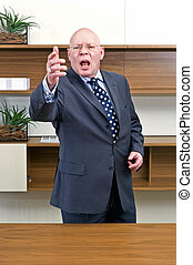 Angry Boss - An angry, gesturing, bold headed senior manager...
