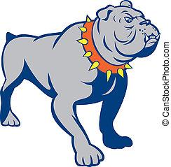 Angry Bulldog Standing Cartoon