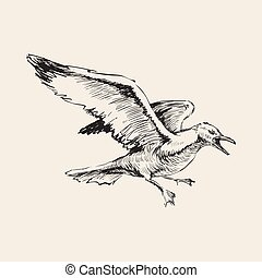 Angry Flying Seagulls Hand Drawing Sketch Vector Illustration.