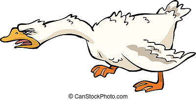 Angry goose on white background vector illustration