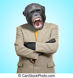 Angry Gorilla In Suit On Blue Background
