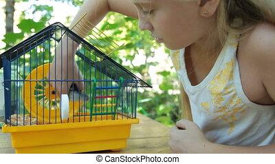 Angry Hamster - Angry hamster biting a little girl