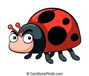 Angry ladybug on white background