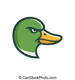 Mallard duck head illustration
