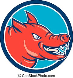 Angry Pig Head Circle Cartoon