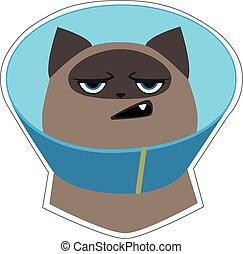 Funny angry siamese cat in blue cone collar. Cute cartoon character. Vector illustration Isolated on white background.
