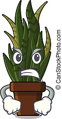 Angry snake plant with the character shape