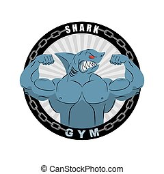 Angry strong shark. Shark bodybuilder with big biceps. Emblem for sports teams. Logo for gym. Athlete fish Vector illustration