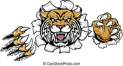 A Wildcat angry animal sports mascot breaking through the background with its claws