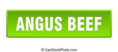 angus beef button. angus beef square green push button