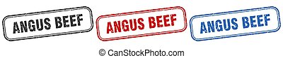 angus beef square isolated sign set. angus beef stamp