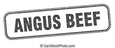 angus beef stamp. angus beef square grunge sign. label