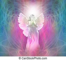 angyal, közül, isteni, fény