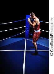 anillo, boxeador, macho, ejercicio