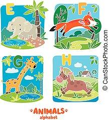 animais, alfabeto, ou, abc.