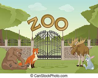 animais, caricatura, jardim zoológico