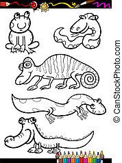 animais, coloração, jogo, livro, caricatura