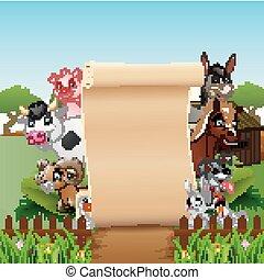 animais, fazenda, com, um, sinal branco, papel