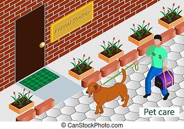 animais, ilustração, vetorial, oferecer-se, ajuda, desabrigado, -, isometric