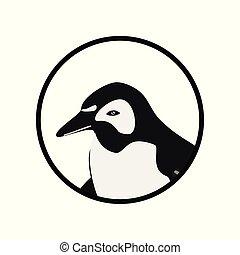 animais, pingüim
