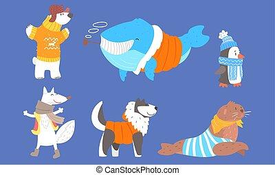 animais, selo, vetorial, polar, morno, ilustração, husky, lobo, pingüim, pele, urso, baleia, cobrança, roupas, cão