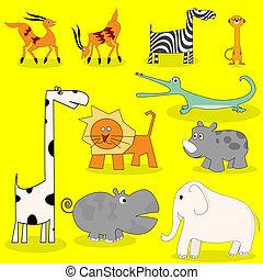 animais selvagens, africano