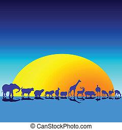 animais selvagens, em, a, crepúsculo