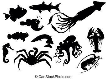 animais, silhuetas, mar, -, vetorial