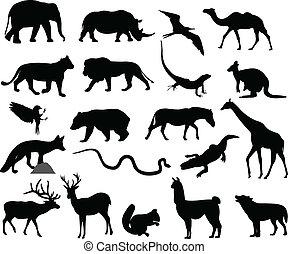 animais, silhuetas